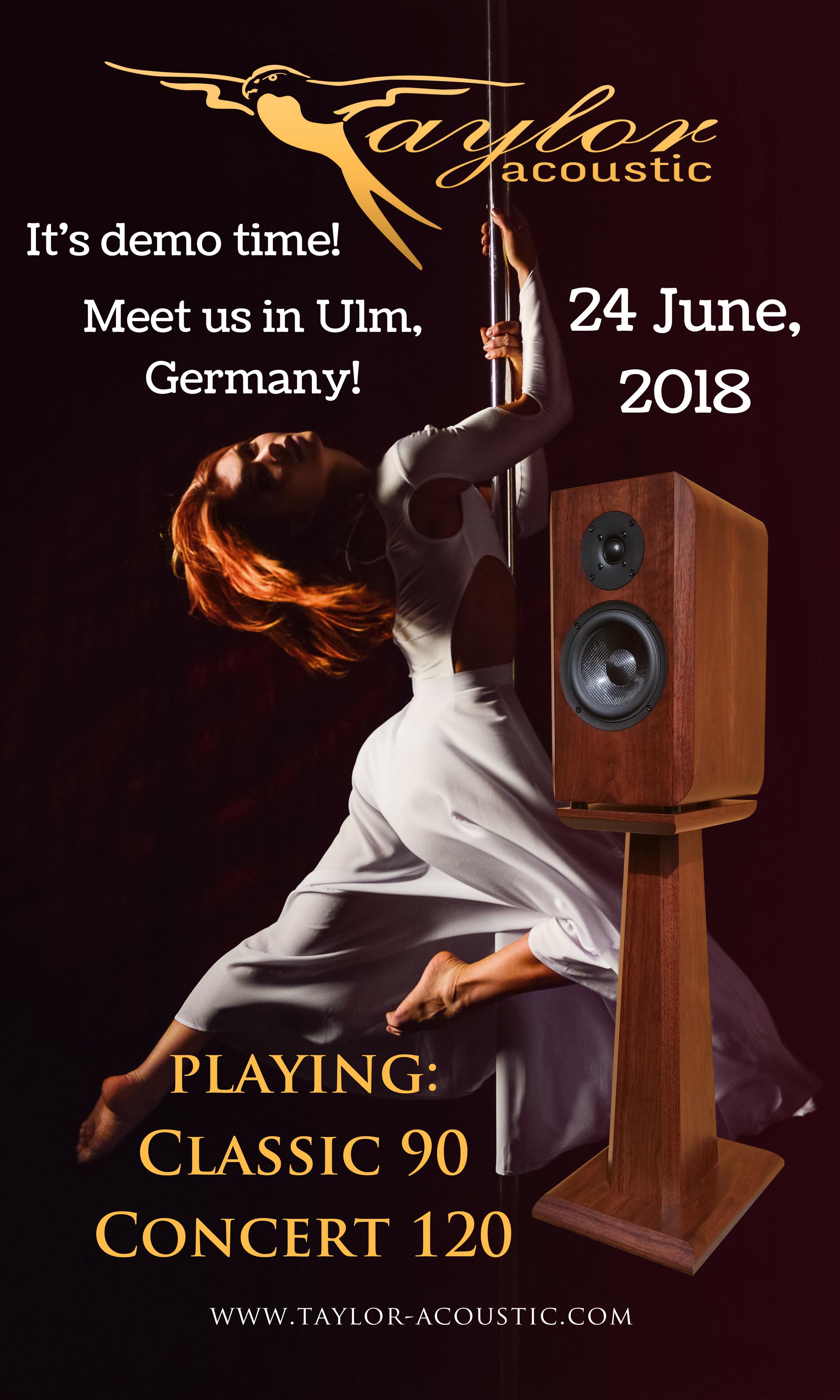 Taylor Acoustic demo in Ulm, Germany, 2018 June 24